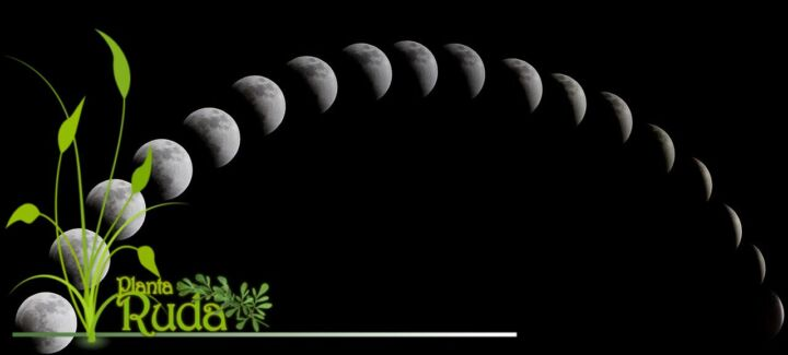 Aquelarre y fases de la Luna