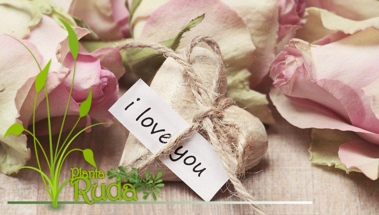 Correspondencia mágica para el día de San Valentín