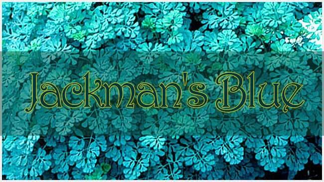 Jackman's Blue