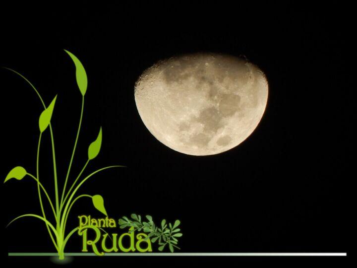 Magia para la Media Luna Menguante: Hechizo para la transición