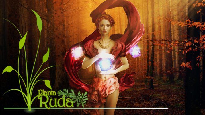 Magia y hechizos para Mabon