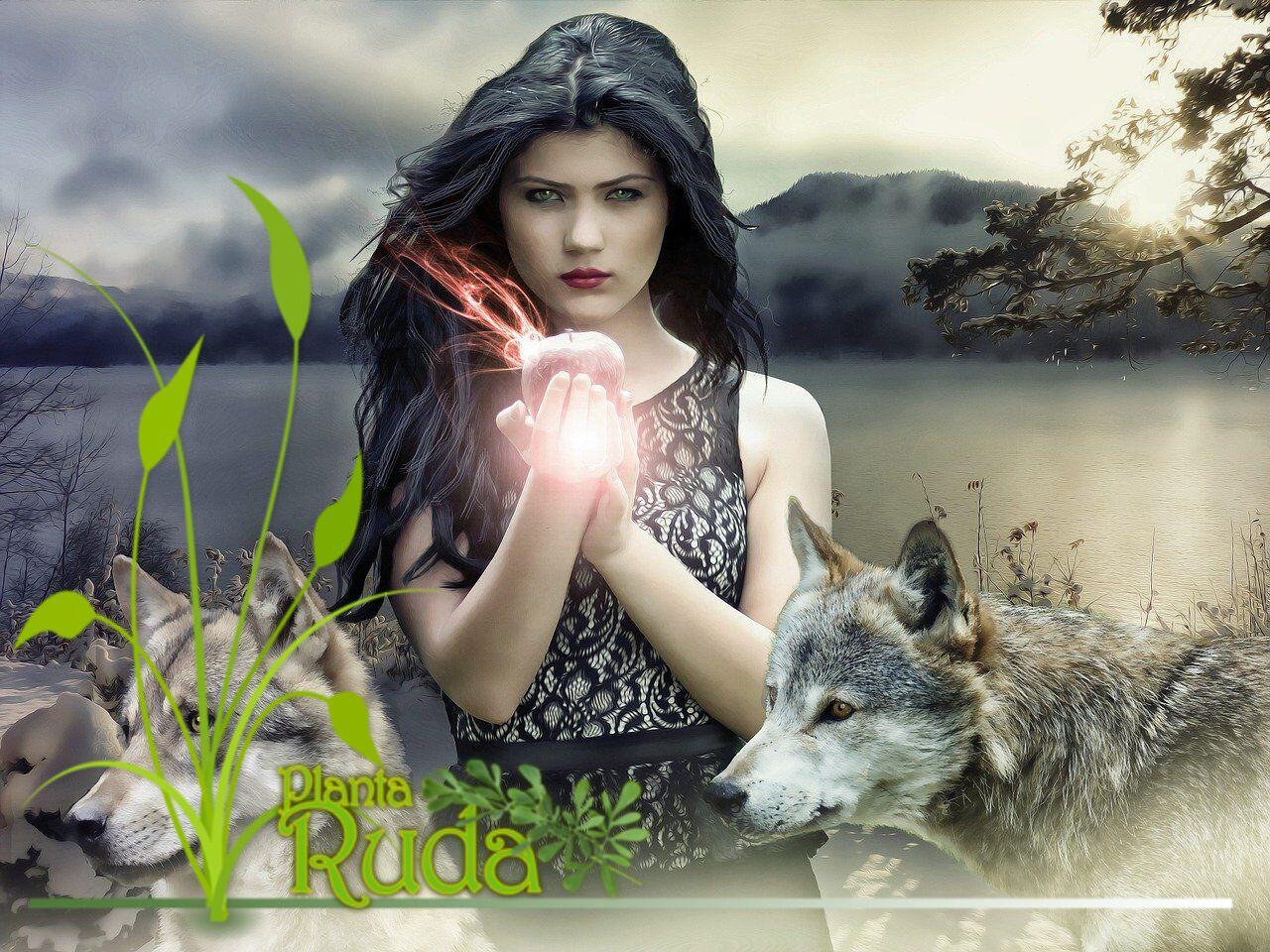 Mitos sobre las Brujas