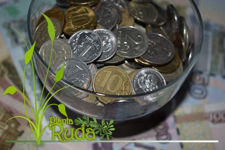 Construir la prosperidad con la magia del dinero