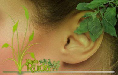 Cómo quitar el dolor de oido