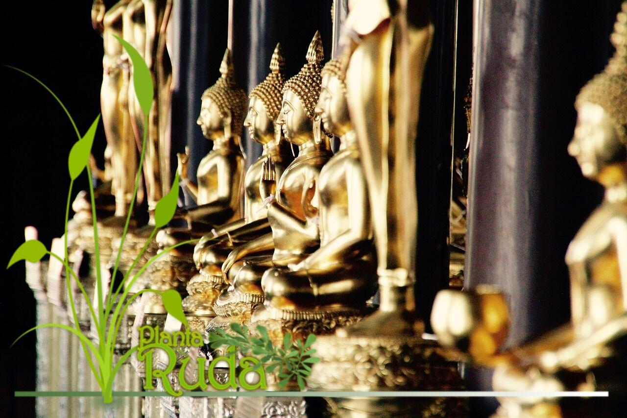 Santuario Budista